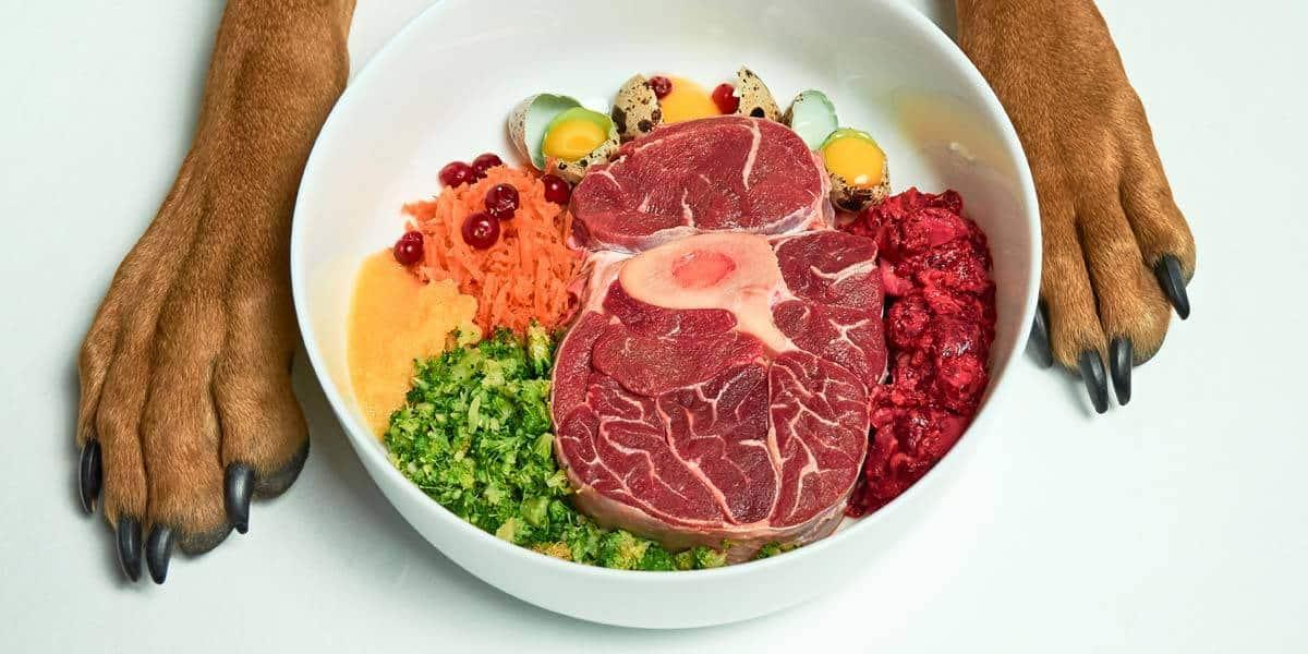Hundefutter hochwertig gesund Gemüse Fleisch